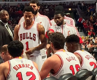 Bulls during_a_timeout